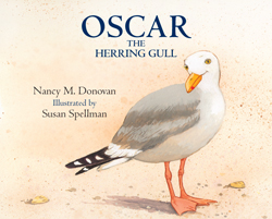 Oscar the Herring Gull By Nancy M. Donovan, Illustrated by Susan Spellman